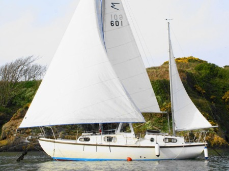 Macwester 28 Wight: Zenquest
