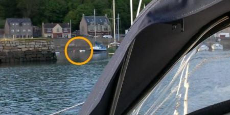 Hippo mooring buoy