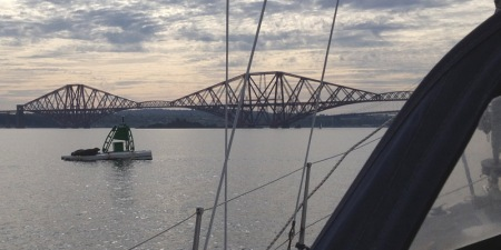Seals with Forth Bridge
